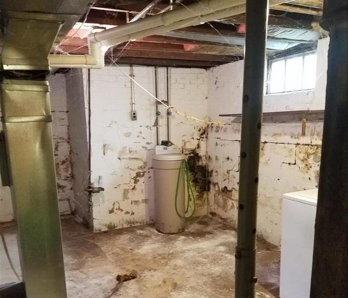 Mold Remediation What SERVPRO of South Elkhart County can do for you