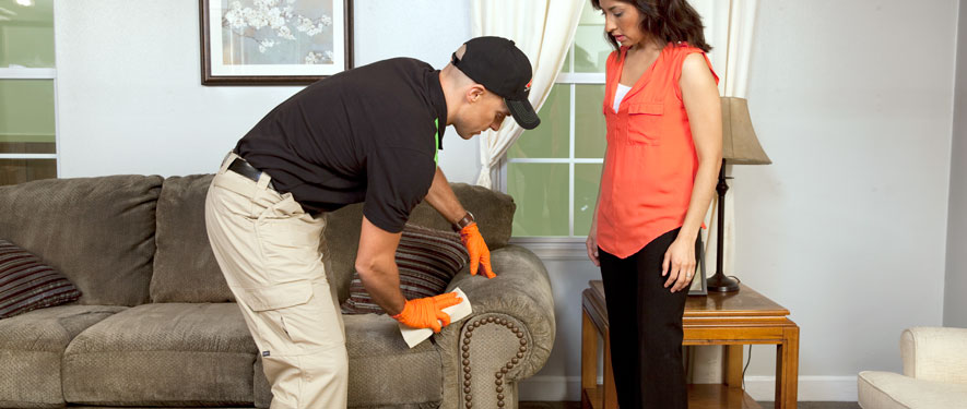 Goshen, IN carpet upholstery cleaning